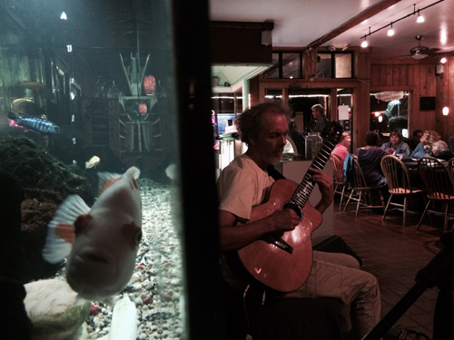 This is how it looks at the Roxy if you're taking it in at the booth next to the fish tank. It's me and the fish jamming in north county.  photo by Dwight Harrington