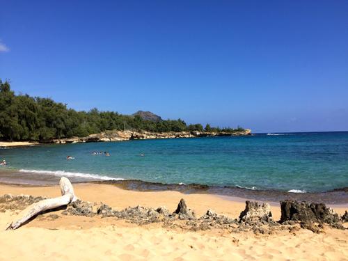 Shipwrecks beach was a magical find!