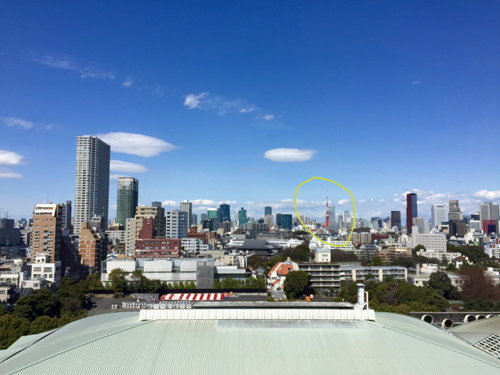 The view out my window with the Tokyo Tower circled in yellow.